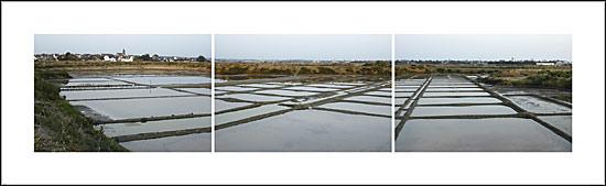Marais salants de Saillé