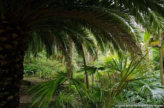 Le jardin exotique Georges Delaselle